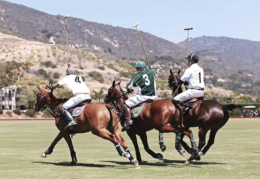 santa barbara polo and racquet 5
