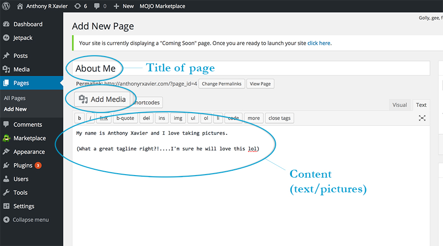 addning a page to wordpress