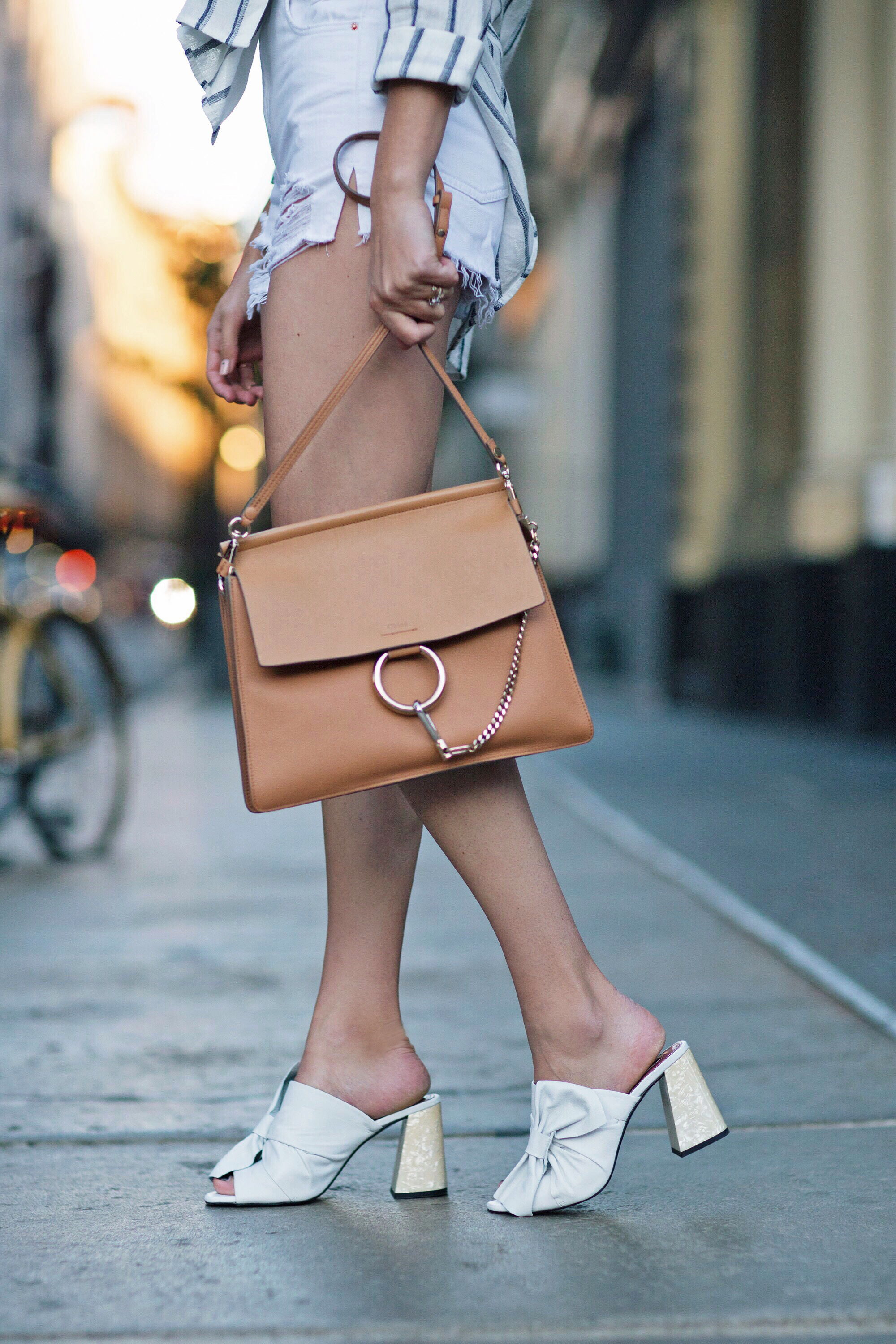 Chloe Faye Bag New York