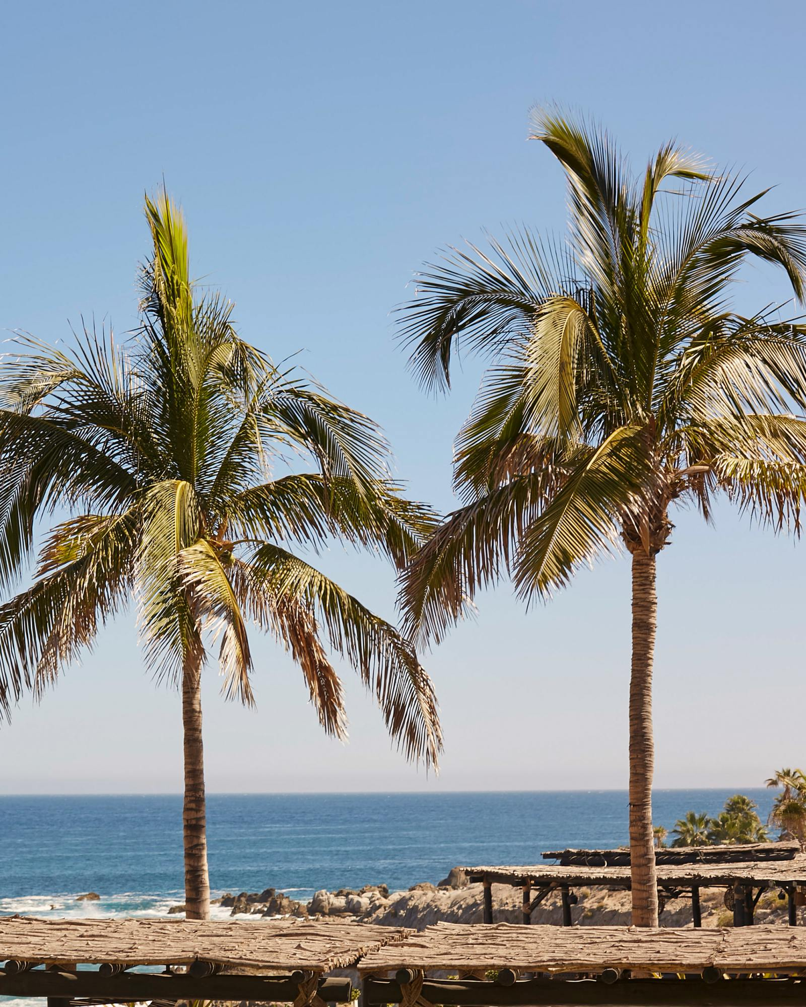 Girls Trip: Cabo San Lucas, Mexico | Thrifts and Threads